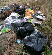 Full plastic sacks and bags dumped on a grass verge