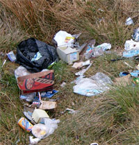 Plastic bags, cardboard and drink cans on a grassed area