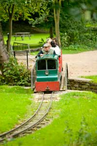 The miniature railway