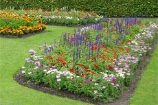 Demonstration flower beds